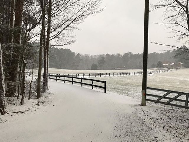 <div class='meta'><div class='origin-logo' data-origin='none'></div><span class='caption-text' data-credit='Credit: Renay Barfield'>A snowy sight in Emory</span></div>