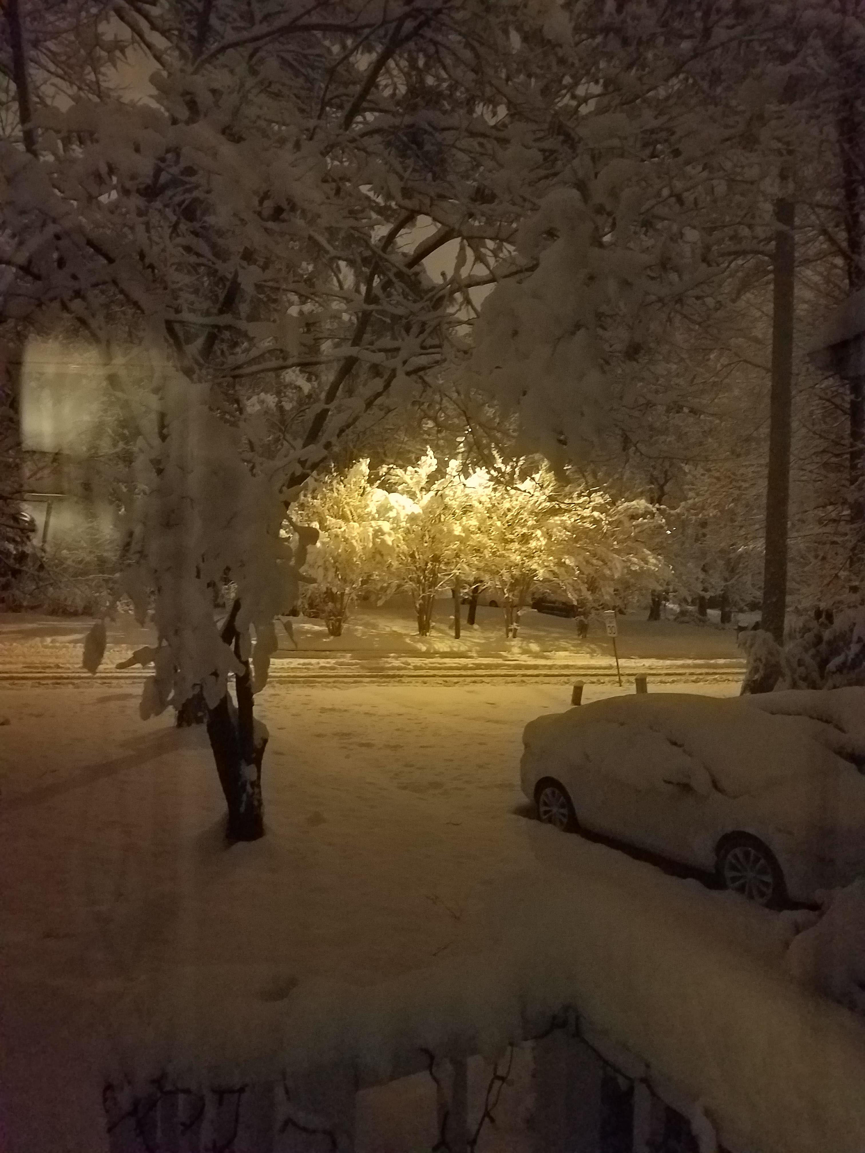 "<div class=""meta image-caption""><div class=""origin-logo origin-image wtvd""><span>WTVD</span></div><span class=""caption-text"">Snow under lights. (Nilsa Baird - ABC11 Eyewitness)</span></div>"