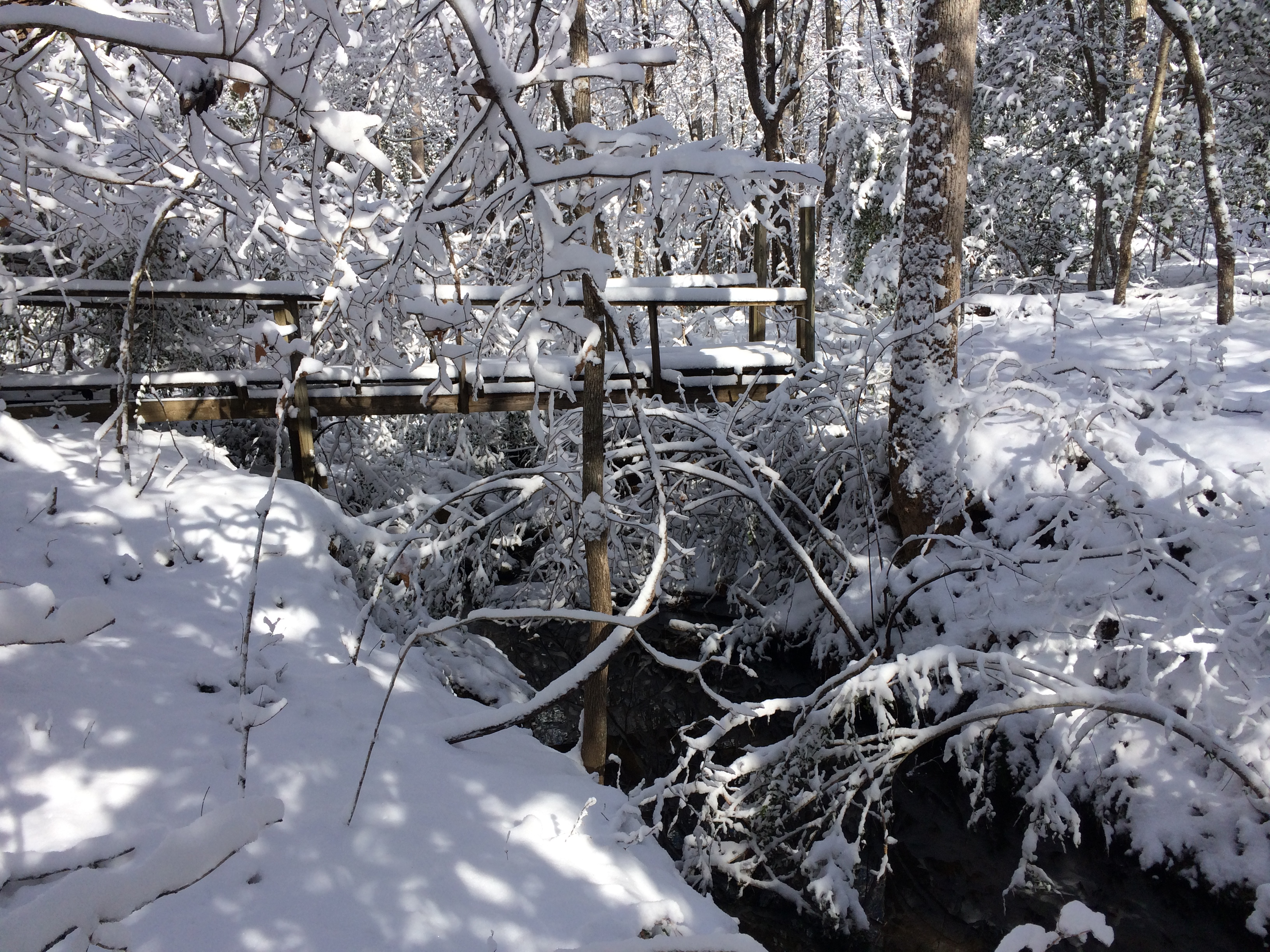 <div class='meta'><div class='origin-logo' data-origin='WTVD'></div><span class='caption-text' data-credit='ABC11 Eyewitness'>Picture of the snow, down by a creek in Franklin County.</span></div>