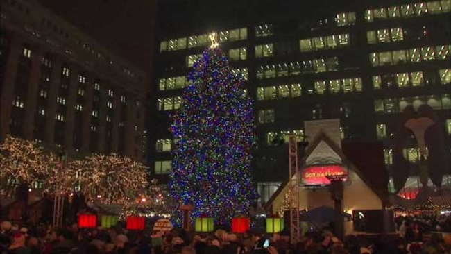 city of chicago accepting official christmas tree nominations abc7chicagocom - Christmas Tree In Chicago
