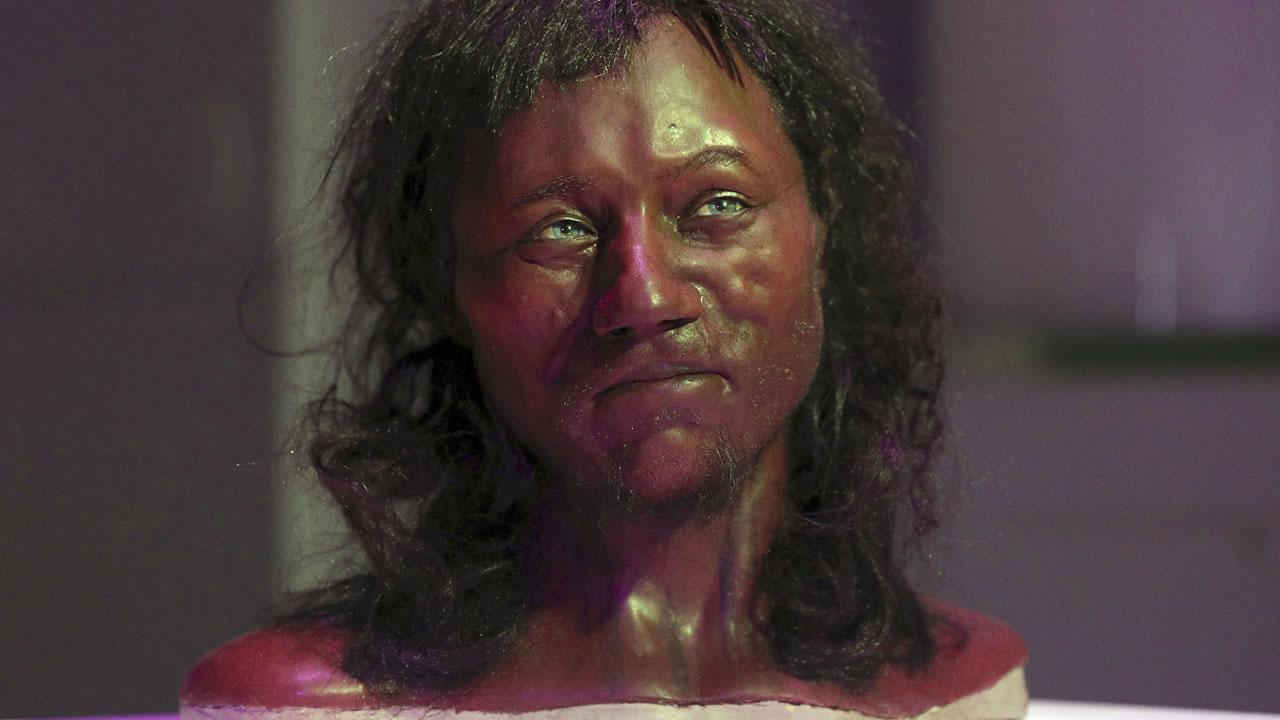 Full facial reconstruction model of a head based on the skull of Britain's oldest complete skeleton on display during a screening event in London Wednesday Feb. 7, 2018. (AP Photo)