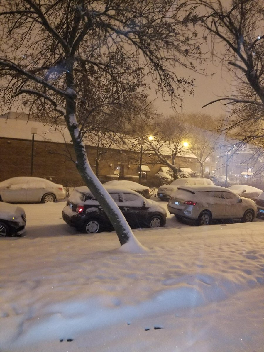 Chicago Weather: Winter storm dumps up to a foot of snow across the ...
