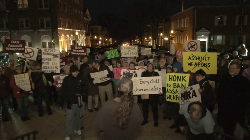 Gun rally held outside Delaware County courthouse following Florida school  shooting