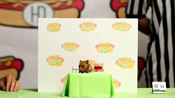 "<div class=""meta image-caption""><div class=""origin-logo origin-image ""><span></span></div><span class=""caption-text"">Tiny Hamster, of course, will be eating hamster-sized hot dogs, while Kobayashi will be eating people-sized hot dogs. (Photo/YouTube, HelloDenizen)</span></div>"