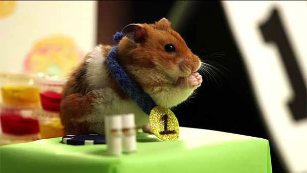 "<div class=""meta image-caption""><div class=""origin-logo origin-image ""><span></span></div><span class=""caption-text"">Congrats to the true hot dog eating champ. Here's hoping there are plenty of tiny, delicious meals at your victory party, Tiny Hamster. (Photo/YouTube, HelloDenizen)</span></div>"