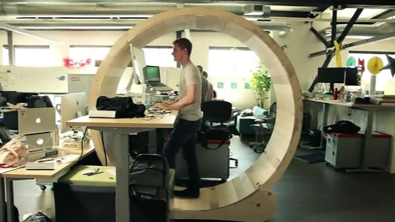 San Francisco Based Artist Creates Standing Desk Inside Human Sized Wheel Abc7 San Francisco