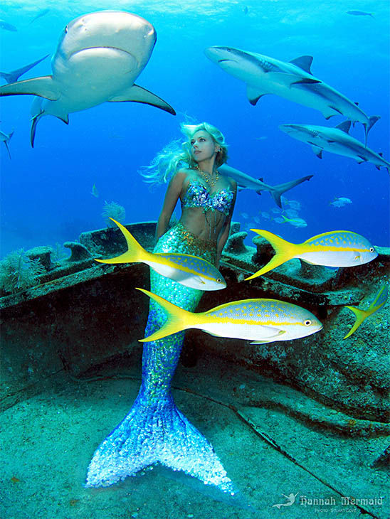 """<div class=""""meta image-caption""""><div class=""""origin-logo origin-image """"><span></span></div><span class=""""caption-text"""">Born in Byron Bay, Australia, Hannah Fraser was obsessed with mermaids since an early age. Not just a model, Hannah is a perforance artist with an ocean conservation agenda. (/HannahMermaid.com)</span></div>"""