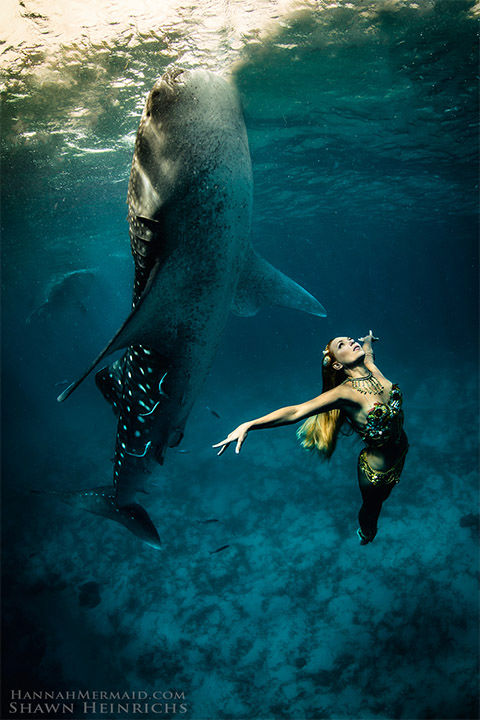 """<div class=""""meta image-caption""""><div class=""""origin-logo origin-image """"><span></span></div><span class=""""caption-text"""">Born in Byron Bay, Australia, Hannah Fraser was obsessed with mermaids since an early age. Not just a model, Hannah is a perforance artist with an ocean conservation agenda. (Shawn Heinrichs/HannahMermaid.com)</span></div>"""
