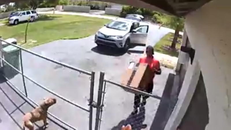 Amazon Delivery Driver Reportedly Fired After Dropping Package On