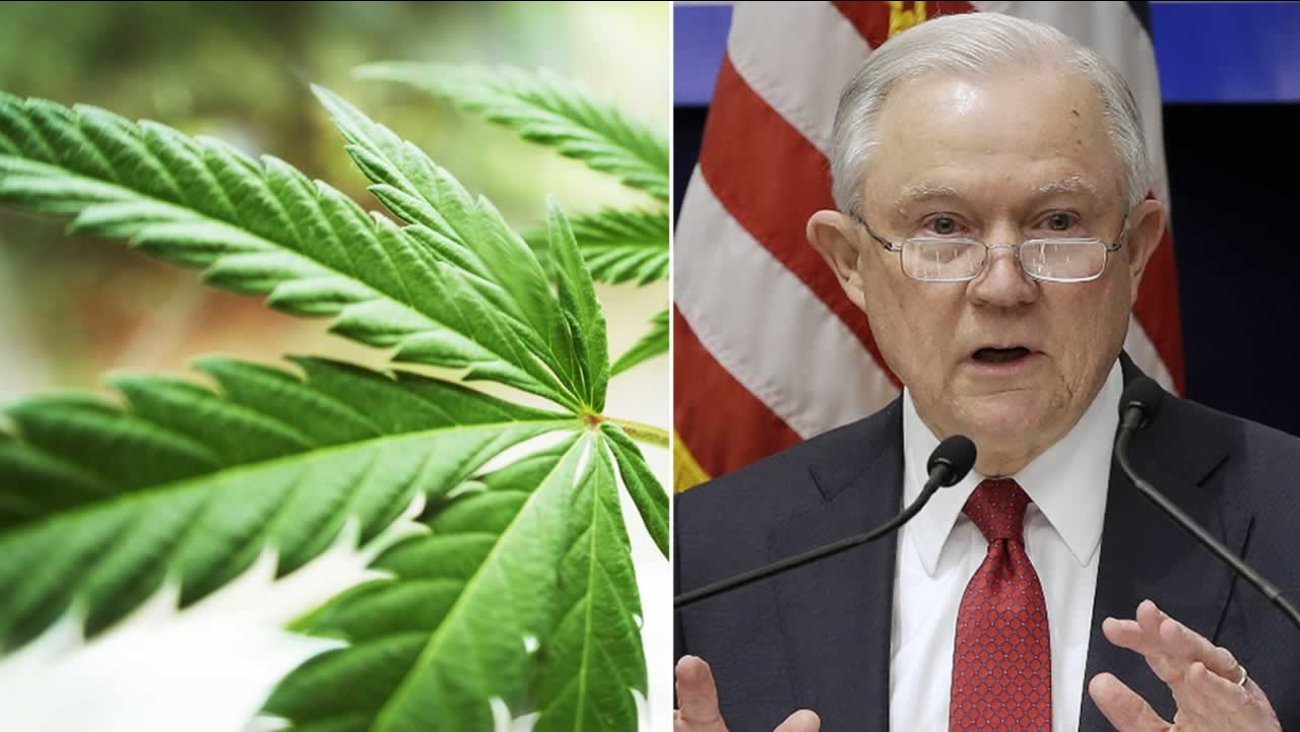 This split image shows an undated file photo of cannabis next to Attorney General Jeff Sessions in Sacramento, Calif.