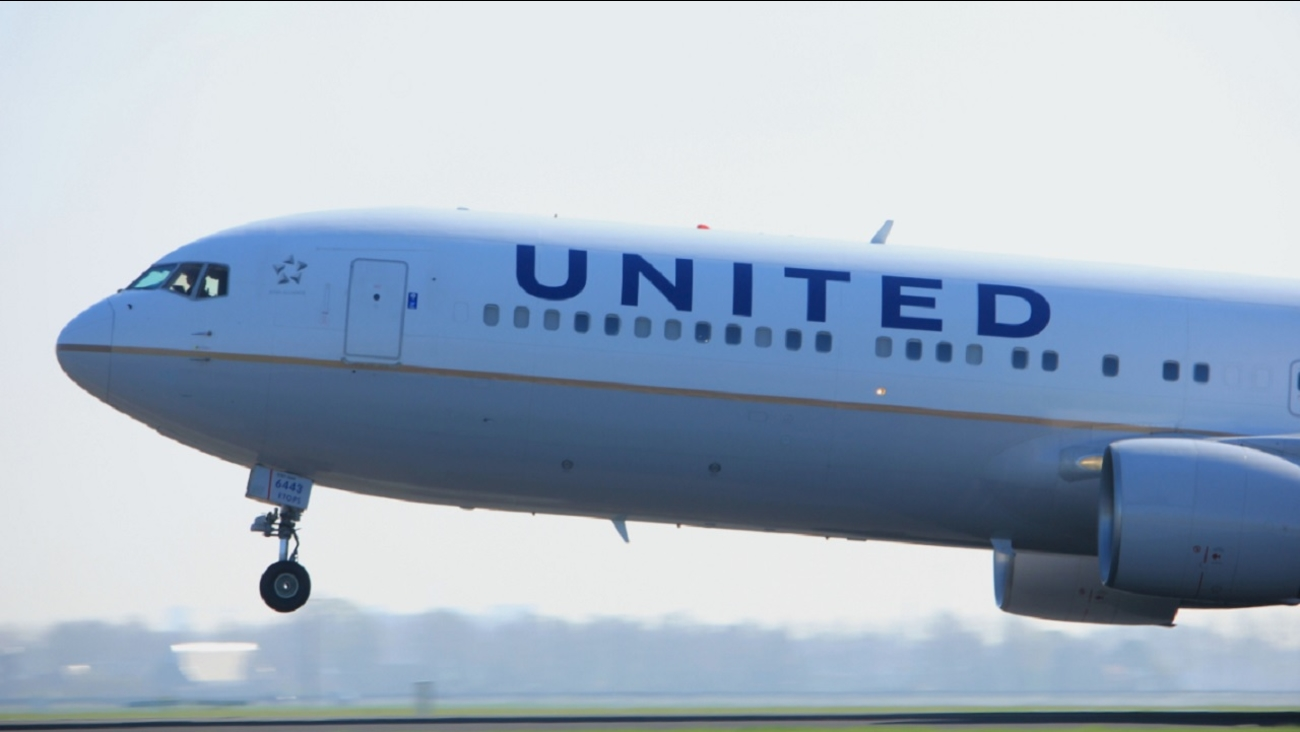 United Airlines Suspends New Reservations For Pets In Cargo Hold