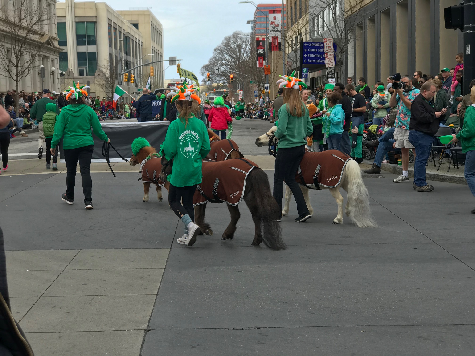 <div class='meta'><div class='origin-logo' data-origin='none'></div><span class='caption-text' data-credit=''>St. Patrick's Day celebration in downtown Raleigh.</span></div>