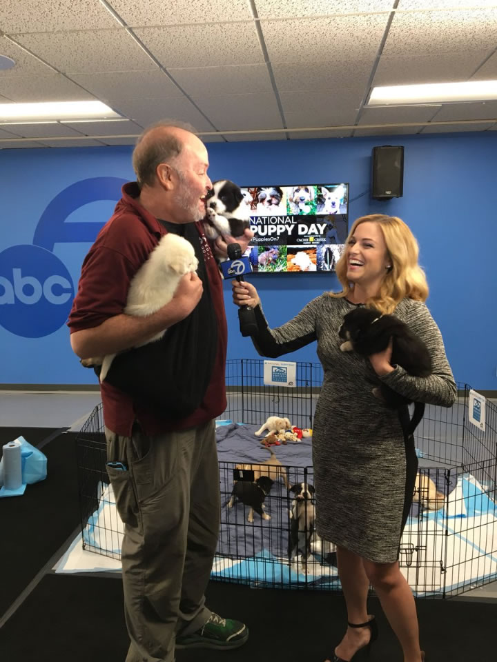<div class='meta'><div class='origin-logo' data-origin='none'></div><span class='caption-text' data-credit='KGO-TV'>ABC7's Alexis Smith speaks with the Humane Society of Silicon Valley in San Francisco on Friday, March 23, 2018.</span></div>