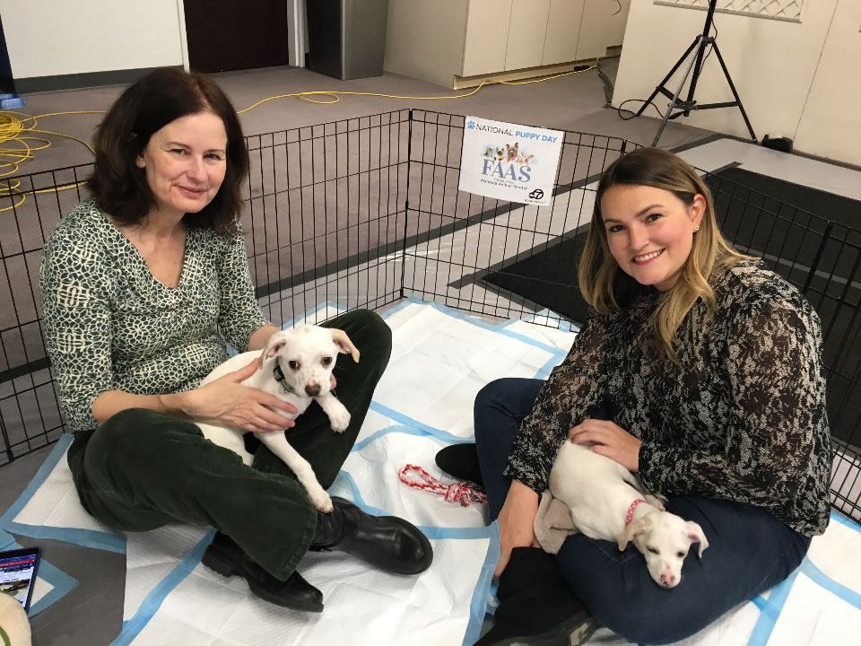 <div class='meta'><div class='origin-logo' data-origin='none'></div><span class='caption-text' data-credit='KGO-TV'>Friends of the Alameda Animal Shelter are seen in San Francisco for National Puppy Day on Friday, March 23, 2018.</span></div>