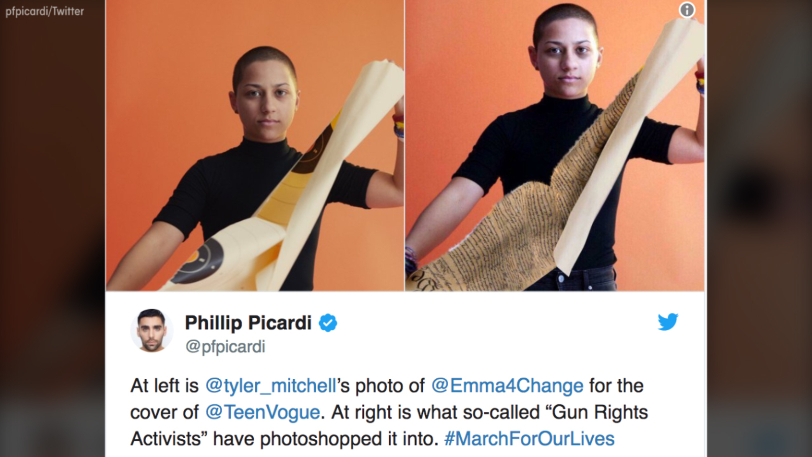 45fd0a52c5 Fake image shows Parkland shooting survivor Emma Gonzalez tearing up the  Constitution