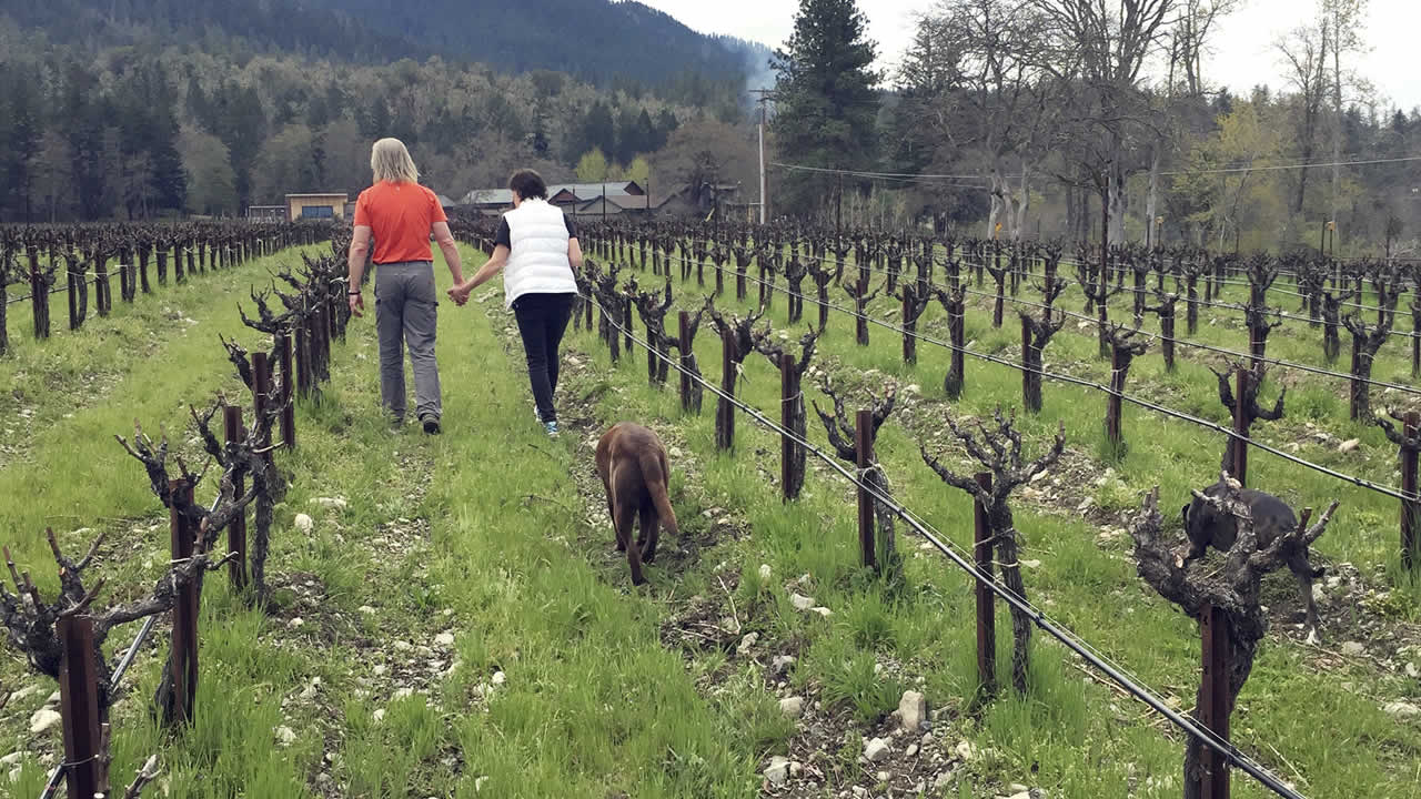 In this April 4, 2017 photo, Bill and Barbara Steele walk through their vineyard outside Jacksonville, Ore.