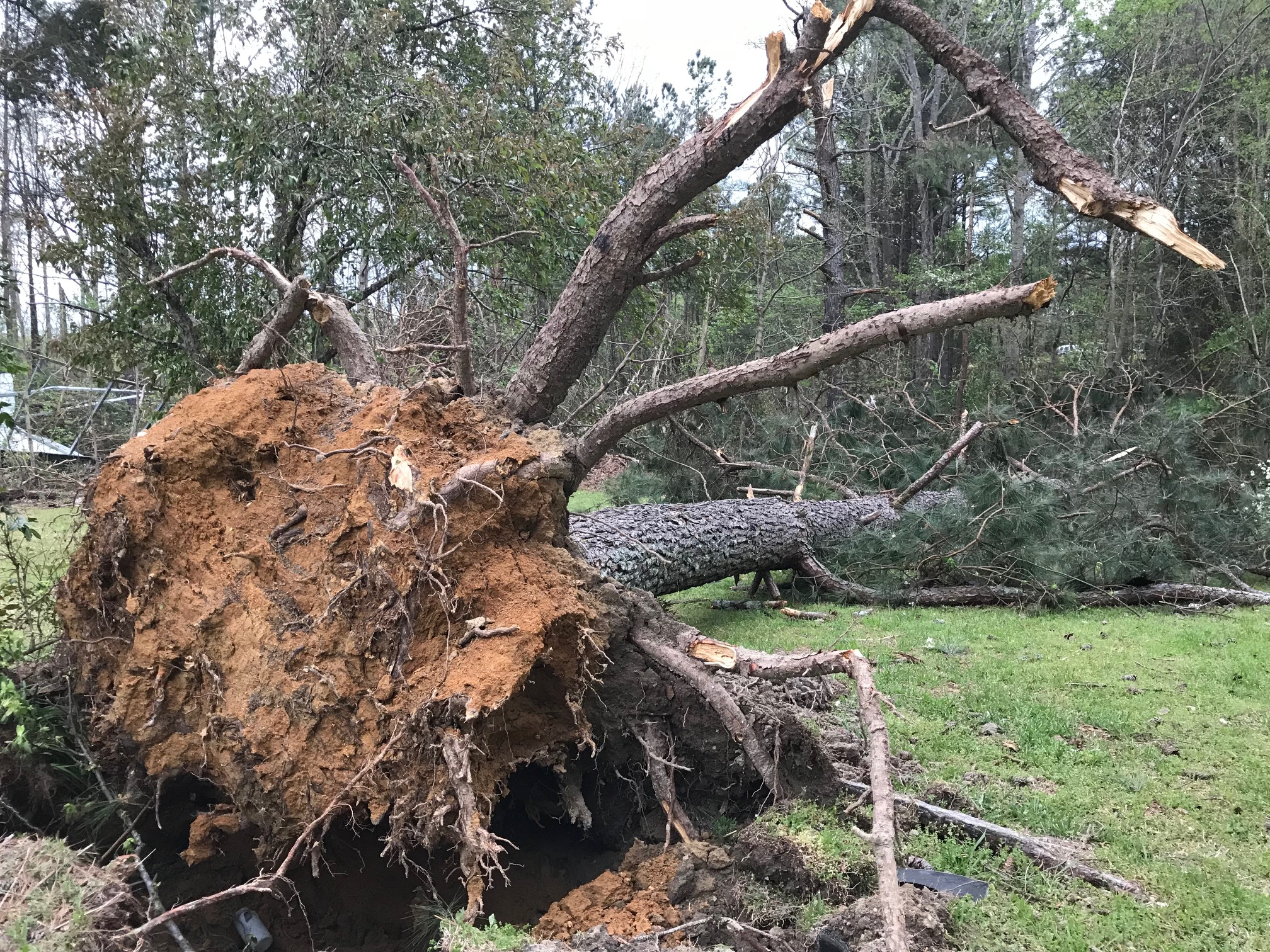 <div class='meta'><div class='origin-logo' data-origin='WTVD'></div><span class='caption-text' data-credit='Robert Judson'>Storm damage along Sadie Drive in Wendell.</span></div>