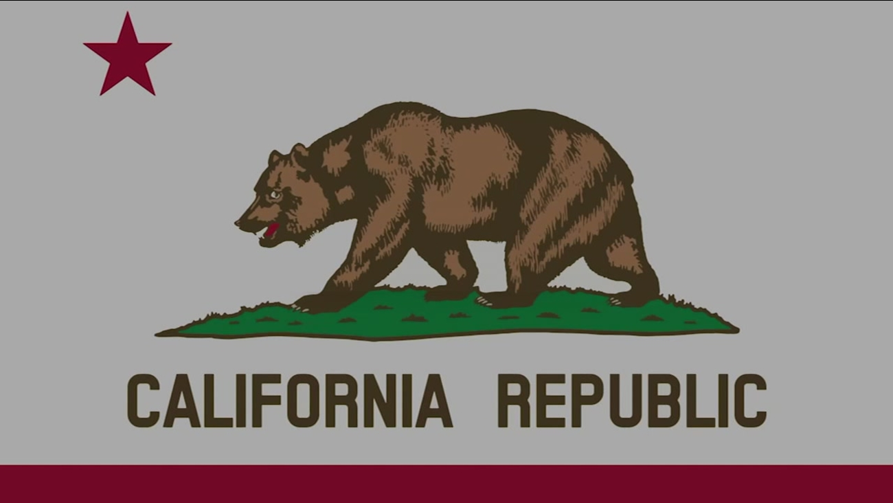 A California flag is pictured in this undated file photo.