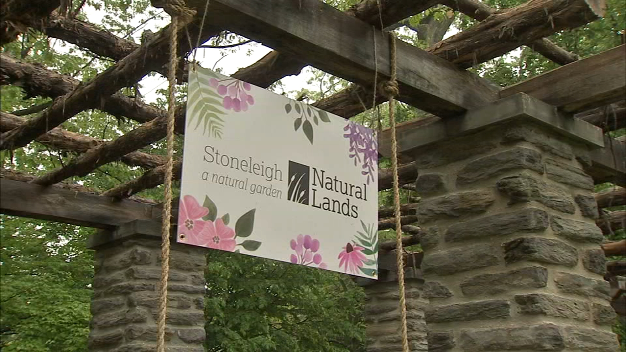 Lower Merion school plan may close newly opened Stoneleigh garden in ...