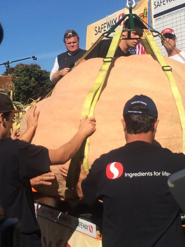 """<div class=""""meta image-caption""""><div class=""""origin-logo origin-image """"><span></span></div><span class=""""caption-text"""">The first mega pumpkin weighed in at 1,740 pounds!</span></div>"""