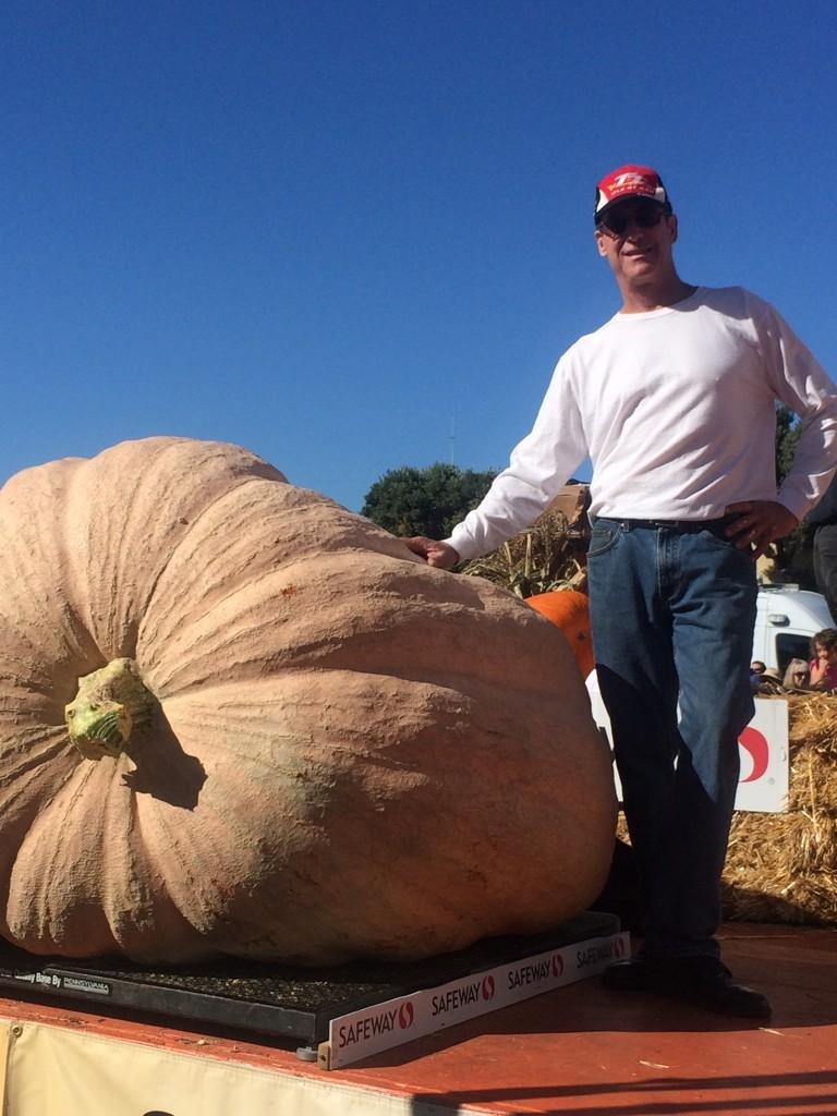 """<div class=""""meta image-caption""""><div class=""""origin-logo origin-image """"><span></span></div><span class=""""caption-text"""">Rob Globus with his pumpkin, which weighs 1,740 pounds. He been been growing pumpkins for four years.</span></div>"""