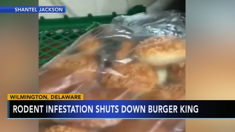 9e238306013 Del. Burger King reopens after video of rodents on hamburger buns ...