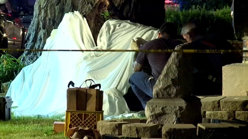 2 dead, 5 injured after branch falls on crowd in Rock Island