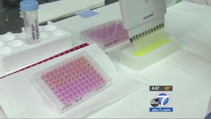 Mushroom extract could help treat human papillomavirus