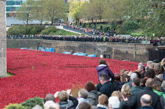 "<div class=""meta image-caption""><div class=""origin-logo origin-image ""><span></span></div><span class=""caption-text"">The ceramic poppy art installation by artist Paul Cummins in the dry moat of the Tower of London (Photo/Tim Ireland)</span></div>"