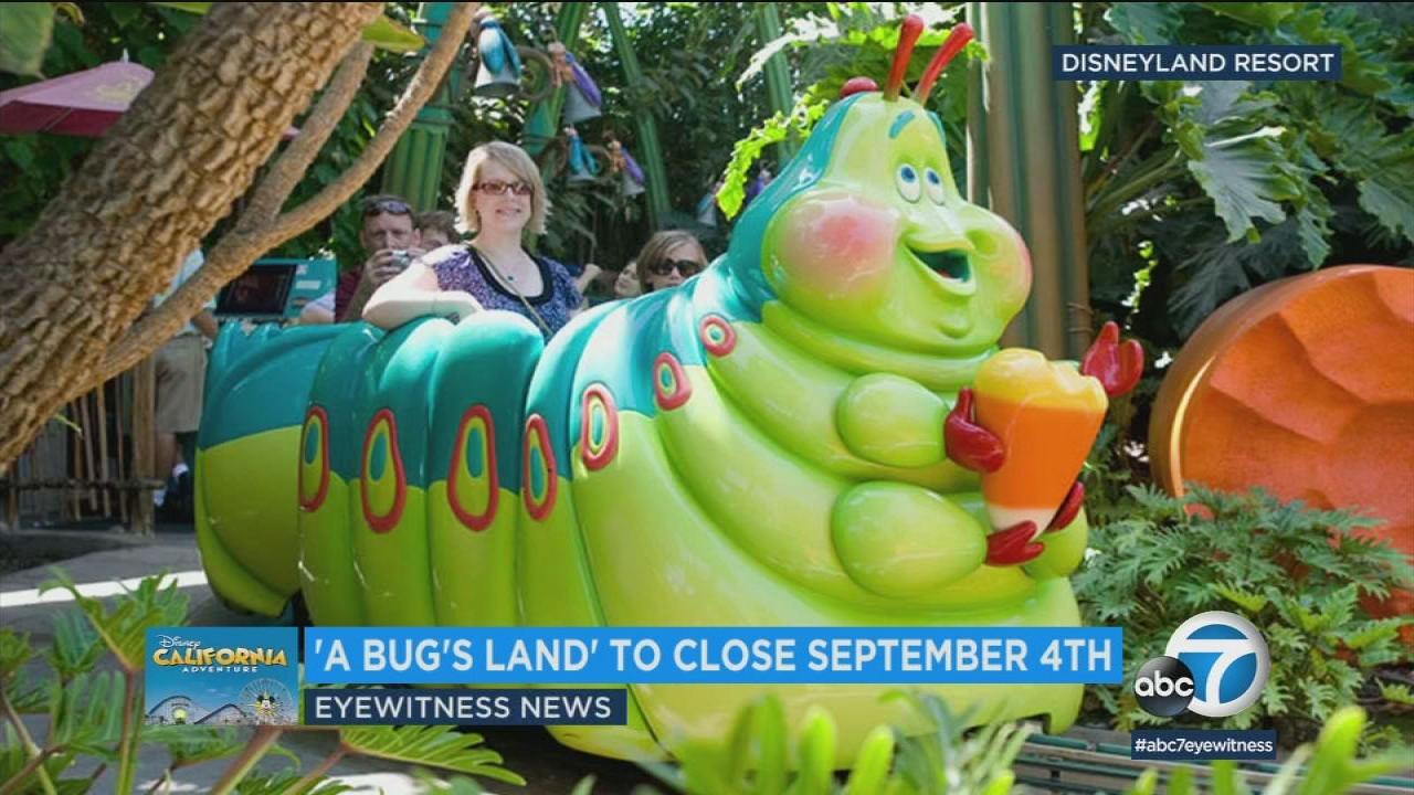 [Parc Walt Disney Studios] Attraction Spider-Man (202?) - Page 36 3793770_072018-kabc-6am-bugs-land-vid