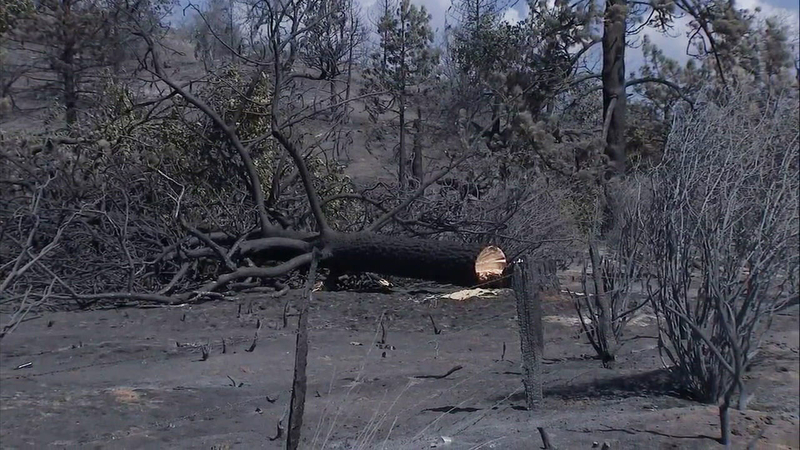 Cranston Fire in Idyllwild 57 percent contained
