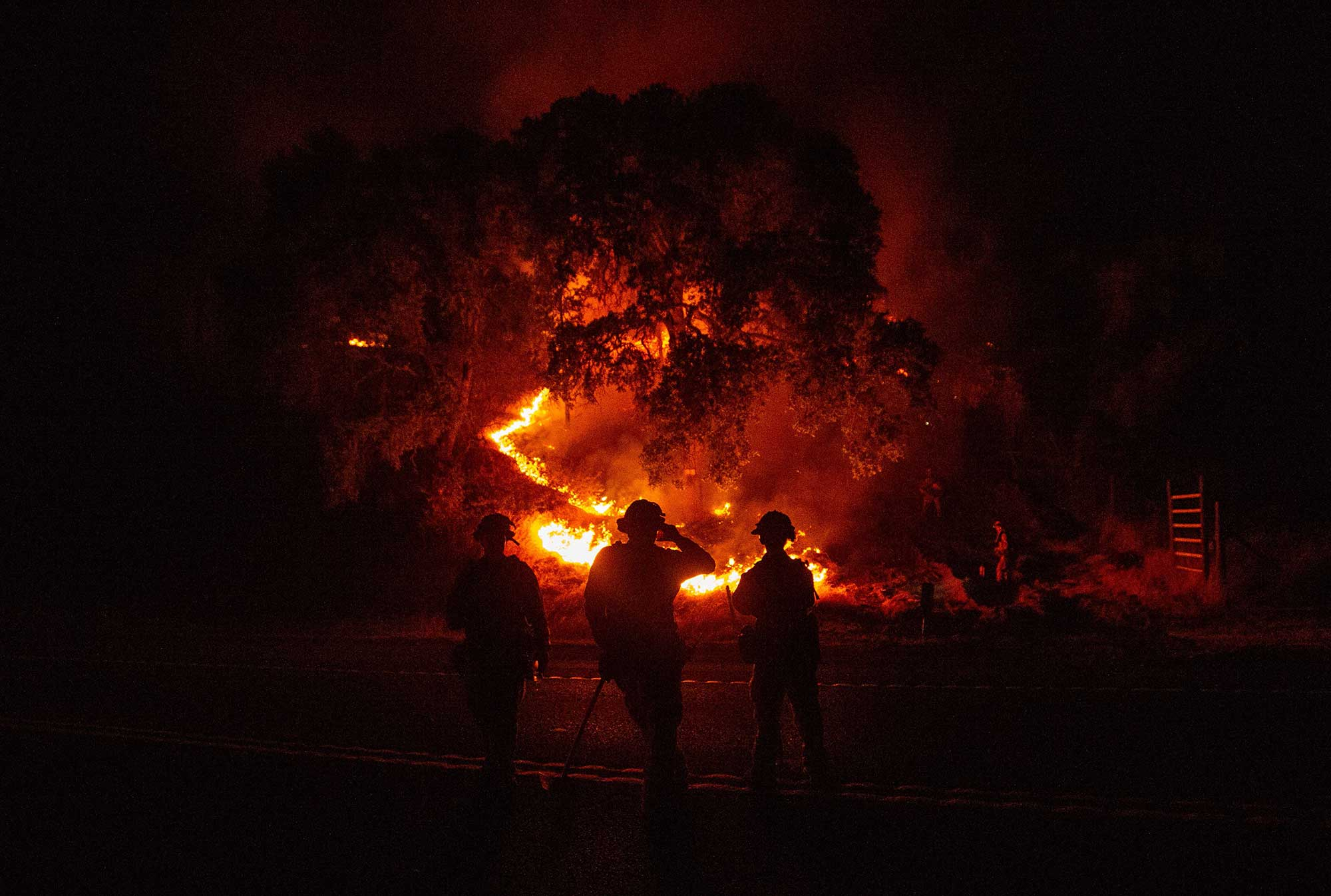 <div class='meta'><div class='origin-logo' data-origin='none'></div><span class='caption-text' data-credit='JOSH EDELSON/AFP/Getty Images'>Firefighters watch a back burn during the Mendocino Complex fire in Upper Lake, California on July 31, 2018.</span></div>