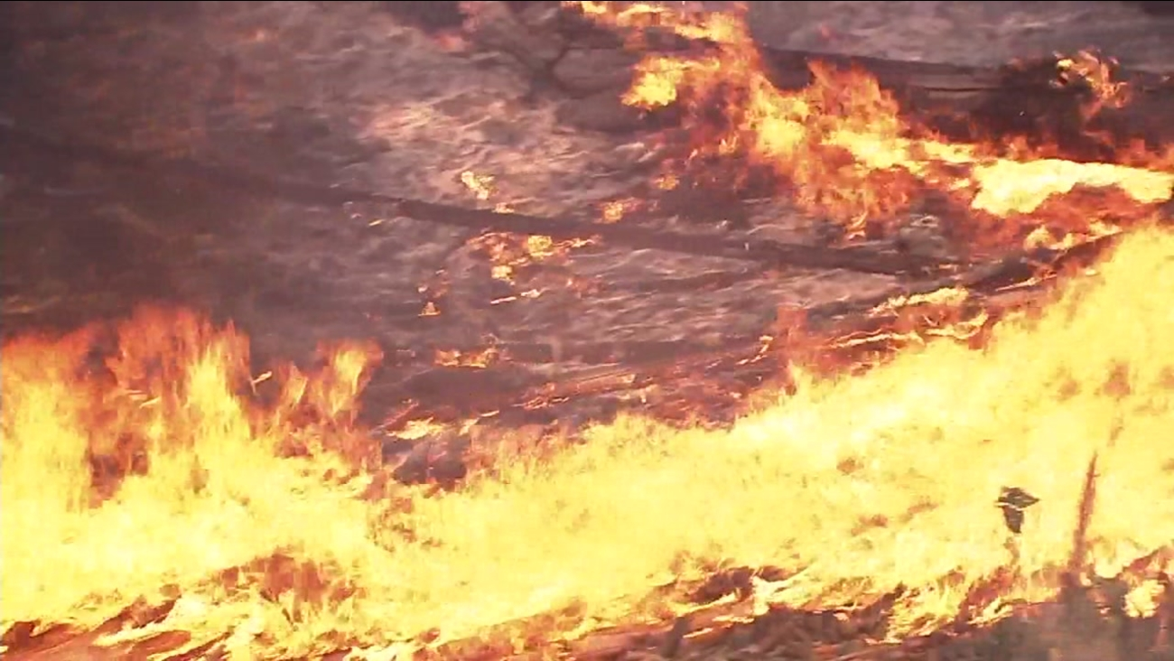 Flames from a wildfire are seen in this undated image.