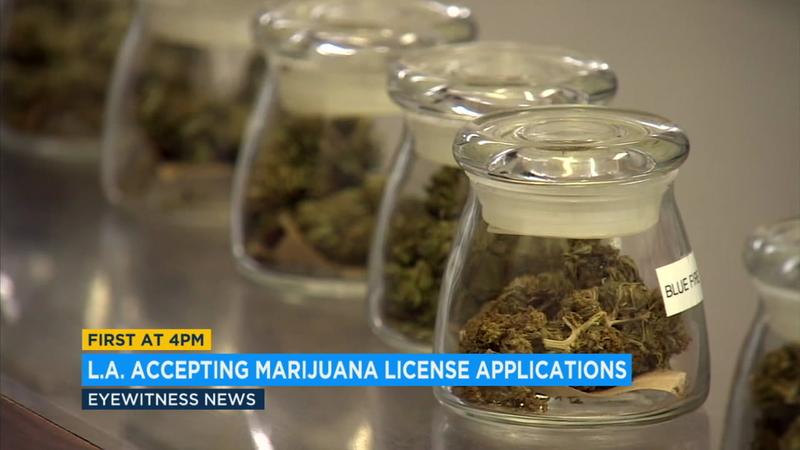 LA begins licensing marijuana growers after long delay