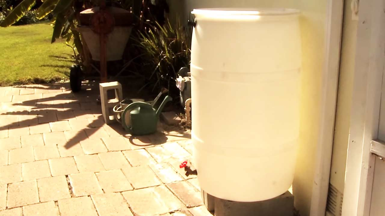 The city of Los Angeles is giving away free rain barrels to 1,000 residents. The goal is to collect rain water to be used on lawns and gardens.