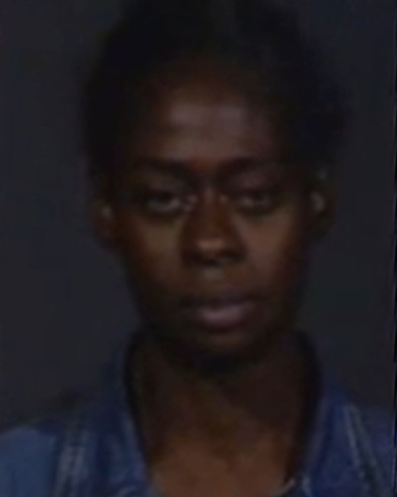 <div class='meta'><div class='origin-logo' data-origin='none'></div><span class='caption-text' data-credit=''>Gerilyn Oden, 45, of Long Island City, is charged with third-degree criminal sale of a controlled substance.</span></div>