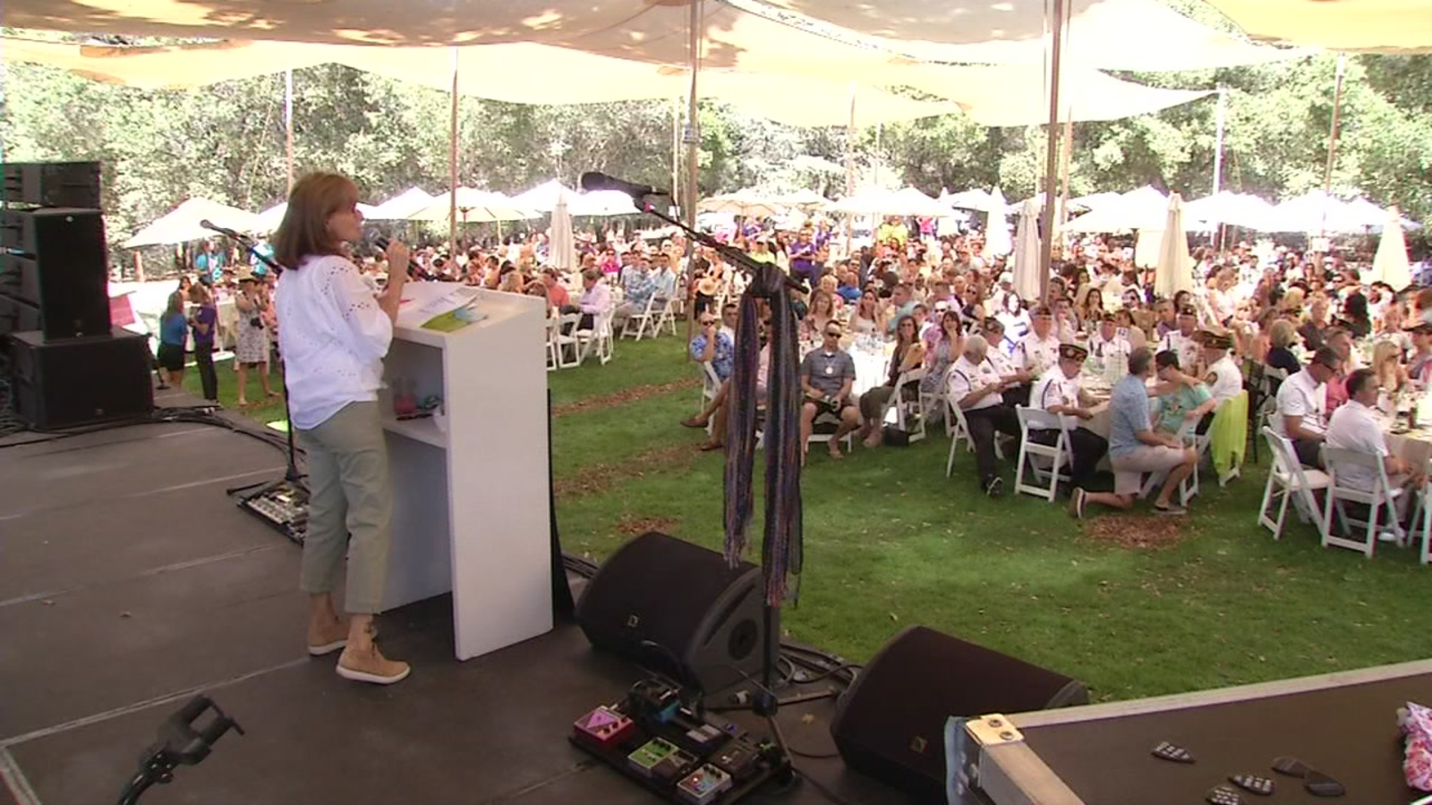 The Taylor Family Foundation S Day In The Park Fundraiser Held In Livermore Abc7 San Francisco