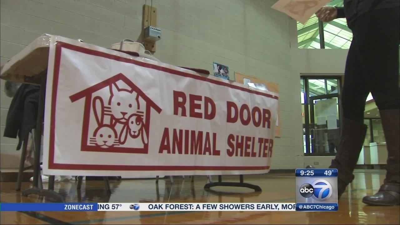 Red Door Animal Shelter Hosts Winter Bazaar Fundraiser Abc7chicago