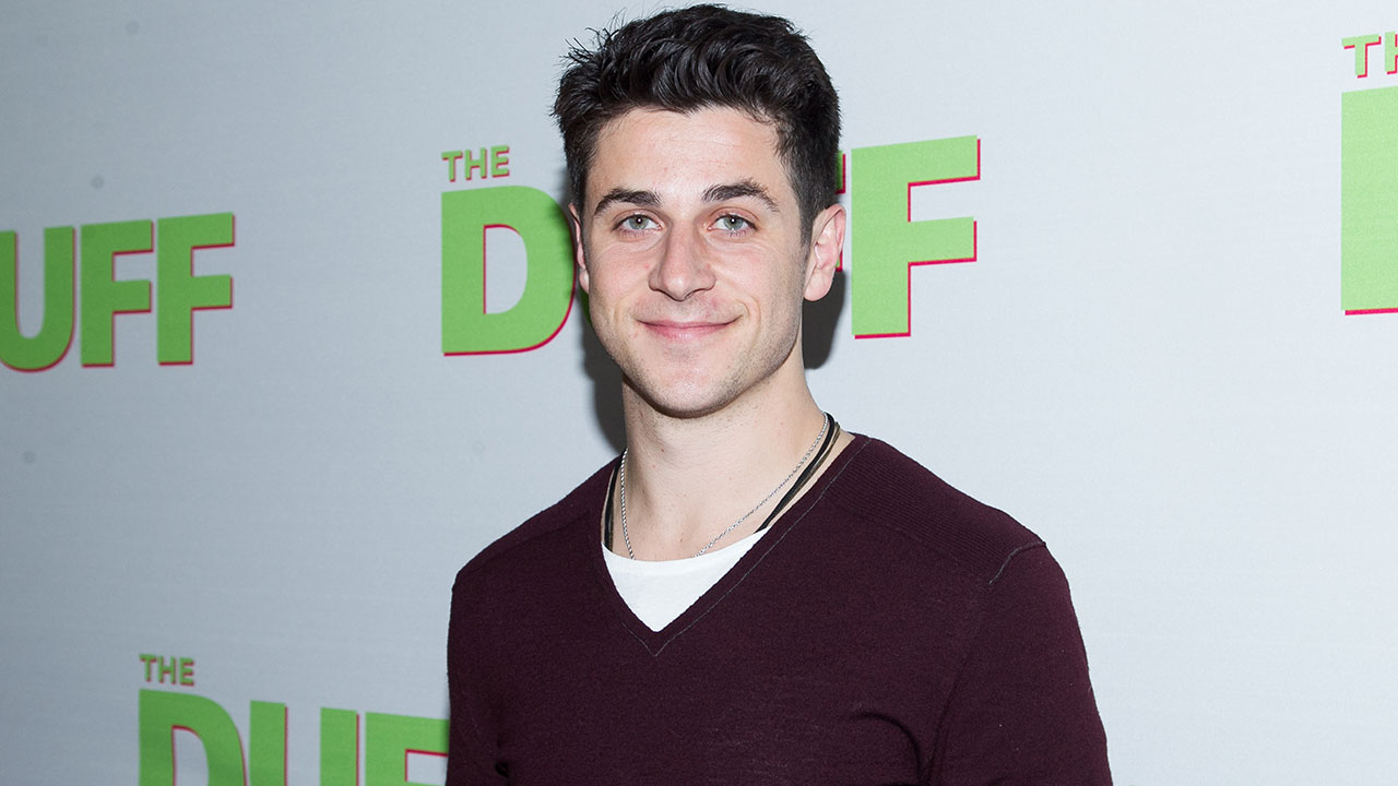 Actor David Henrie is seen arriving at a movie premiere in Los Angeles on Feb. 12, 2015.