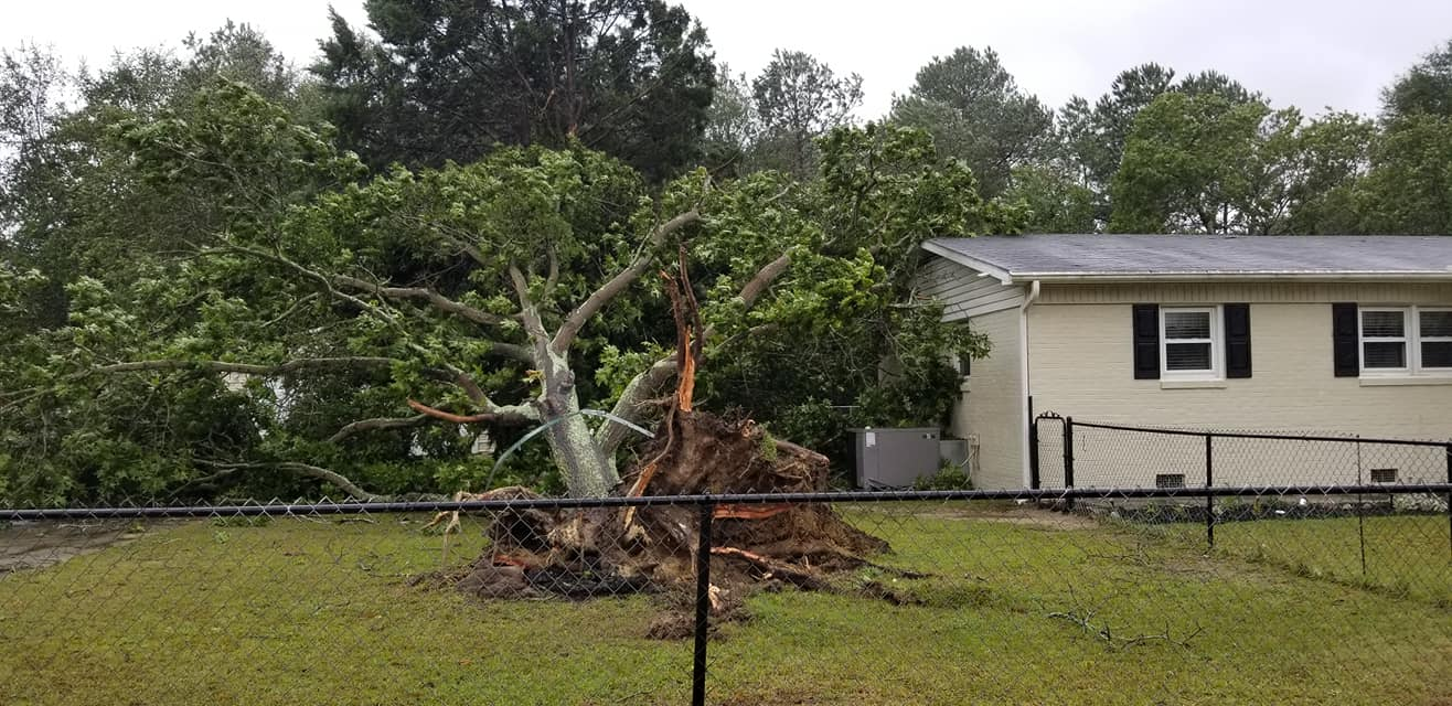 "<div class=""meta image-caption""><div class=""origin-logo origin-image wtvd""><span>WTVD</span></div><span class=""caption-text"">A tree is down Friday at a home on Camden Road in Fayetteville. (Courtesy of Lisa Sorrells)</span></div>"