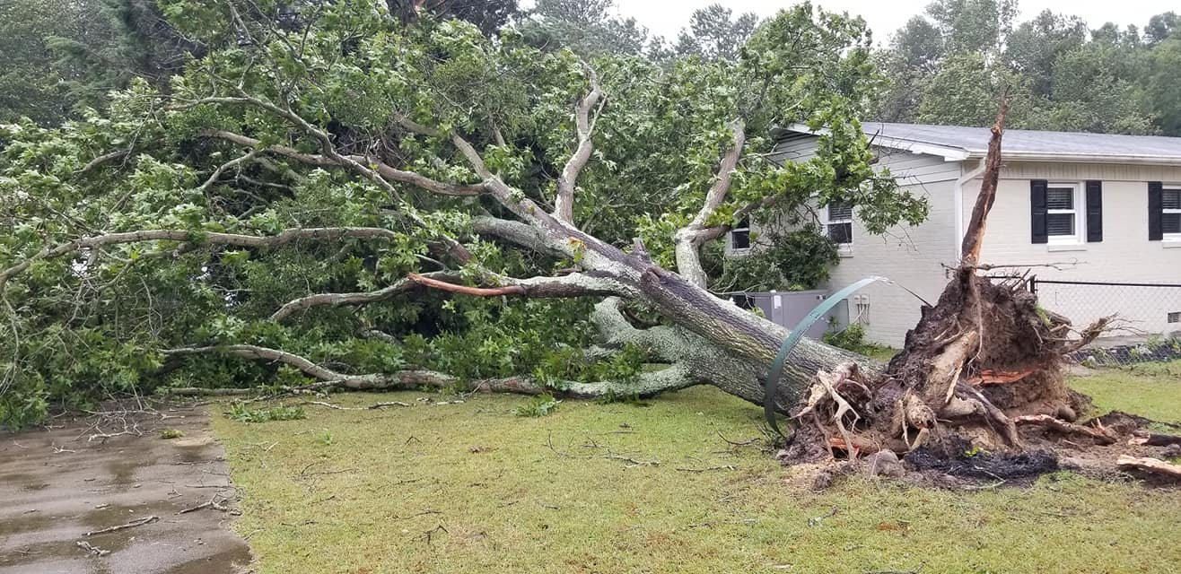 <div class='meta'><div class='origin-logo' data-origin='WTVD'></div><span class='caption-text' data-credit='Courtesy of Lisa Sorrells'>A tree is down Friday at a home on Camden Road in Fayetteville.</span></div>