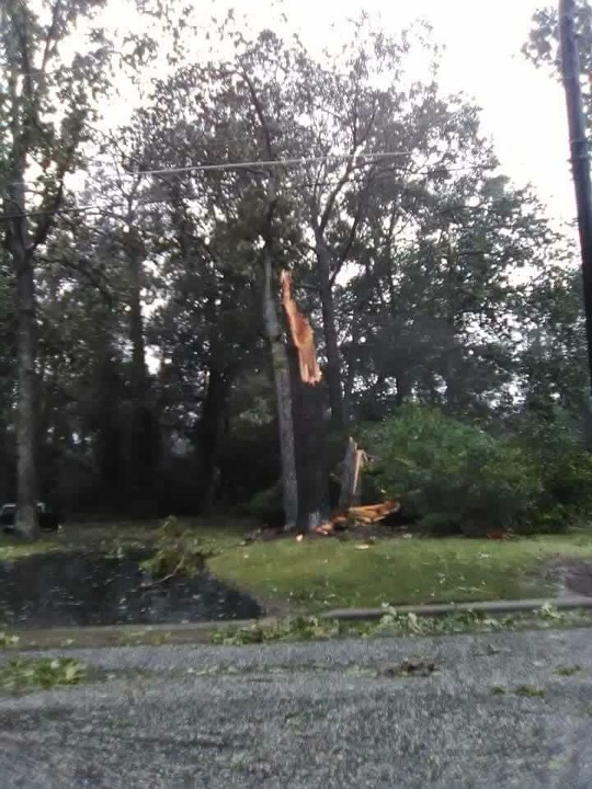 <div class='meta'><div class='origin-logo' data-origin='WTVD'></div><span class='caption-text' data-credit='Courtesy of Chris Hagan'>Downed trees and flooding in Dunn, N.C. on Friday.</span></div>