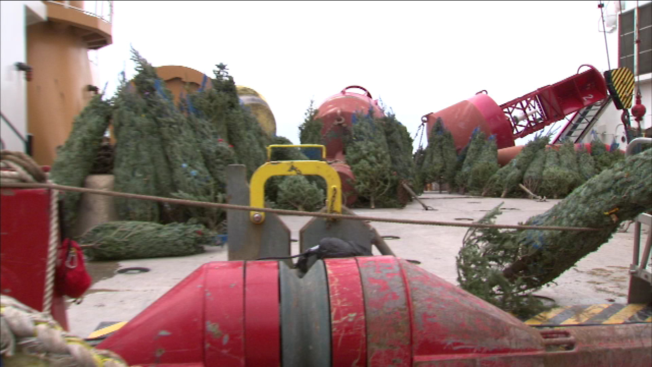 Christmas Ship Docks With Trees For Chicago Families Abc7chicago Com