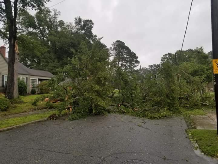 <div class='meta'><div class='origin-logo' data-origin='WTVD'></div><span class='caption-text' data-credit='ABC11 Eyewitness - Chris Hagan'>Damage from Florence in Sampson County, N.C.</span></div>