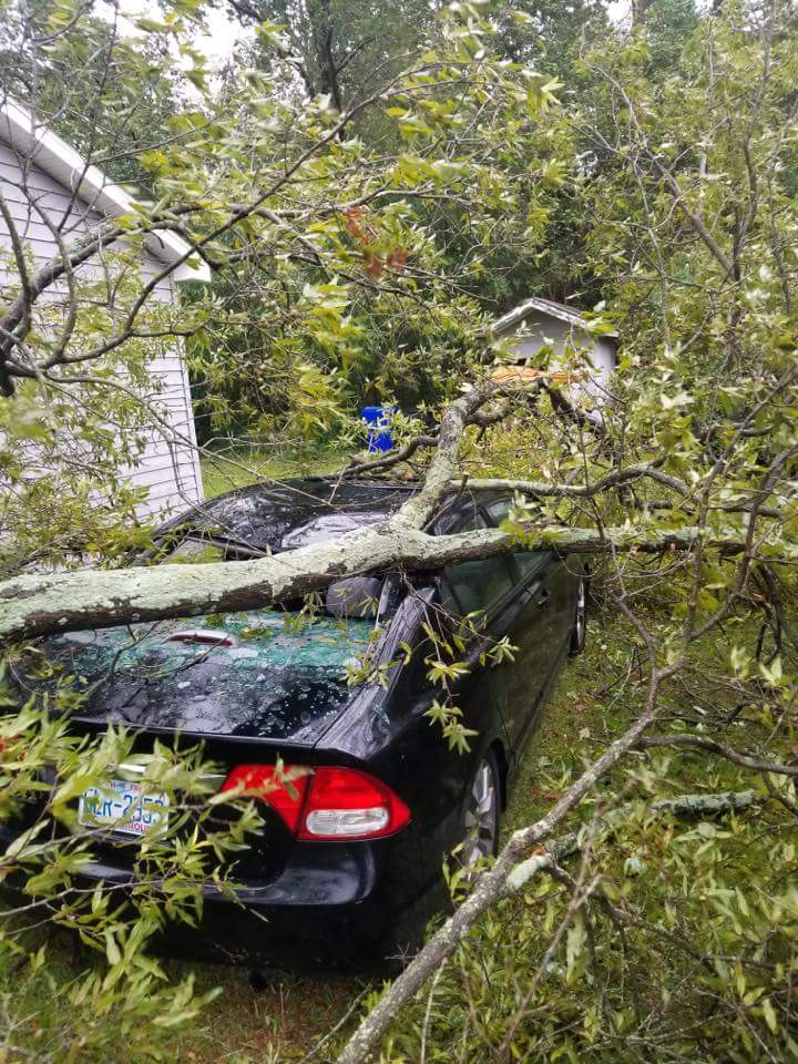 "<div class=""meta image-caption""><div class=""origin-logo origin-image wtvd""><span>WTVD</span></div><span class=""caption-text"">A car is damaged by a fallen tree in Sampson County, N.C. (ABC11 Eyewitness - Chris Hagan)</span></div>"