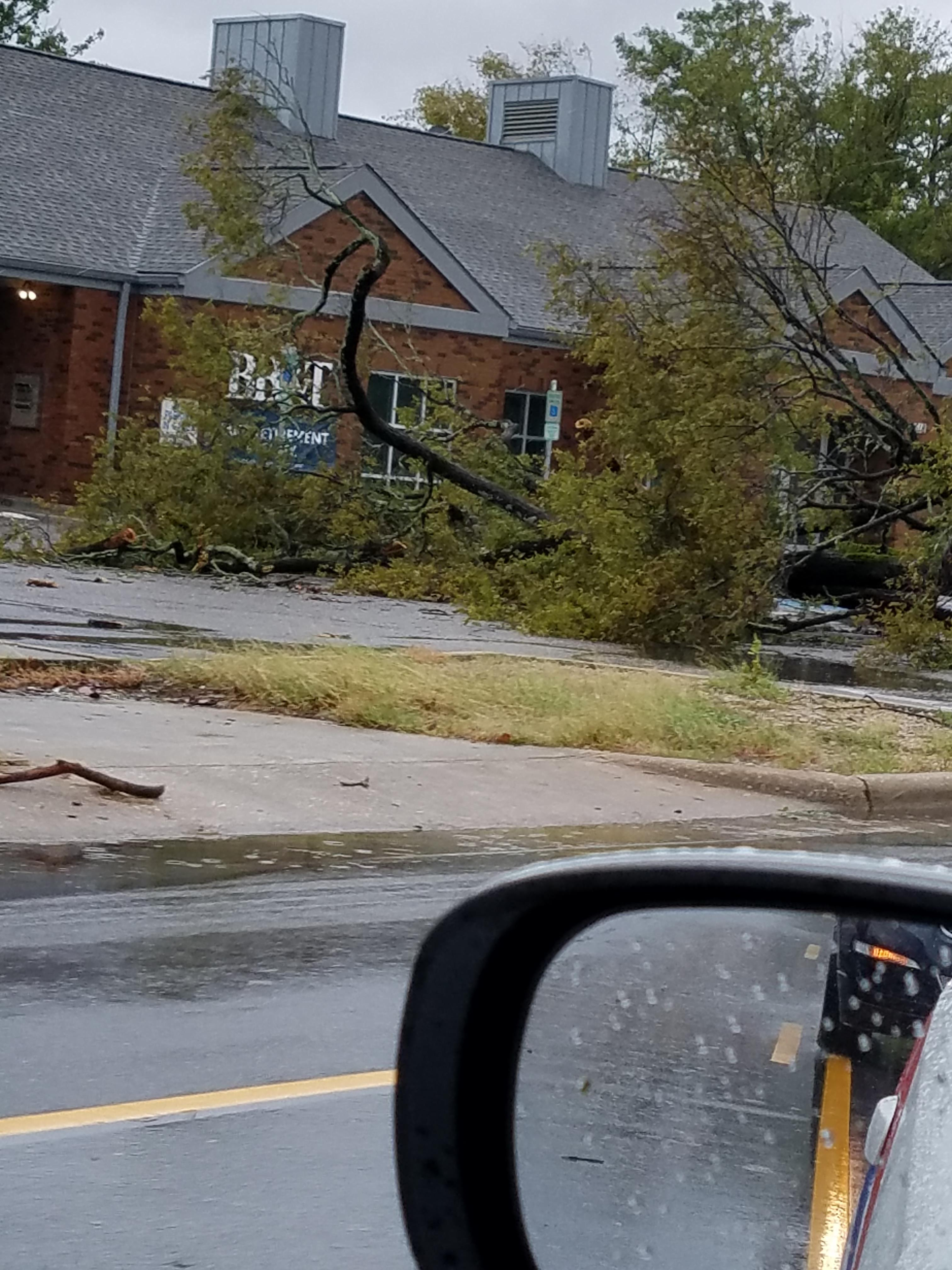 "<div class=""meta image-caption""><div class=""origin-logo origin-image wtvd""><span>WTVD</span></div><span class=""caption-text"">A large tree fell on the parking lot of the Hope Mills BB&T on North Main St. nearly striking the bank itself. (ABC11 Eyewitness - Wayne Huff)</span></div>"