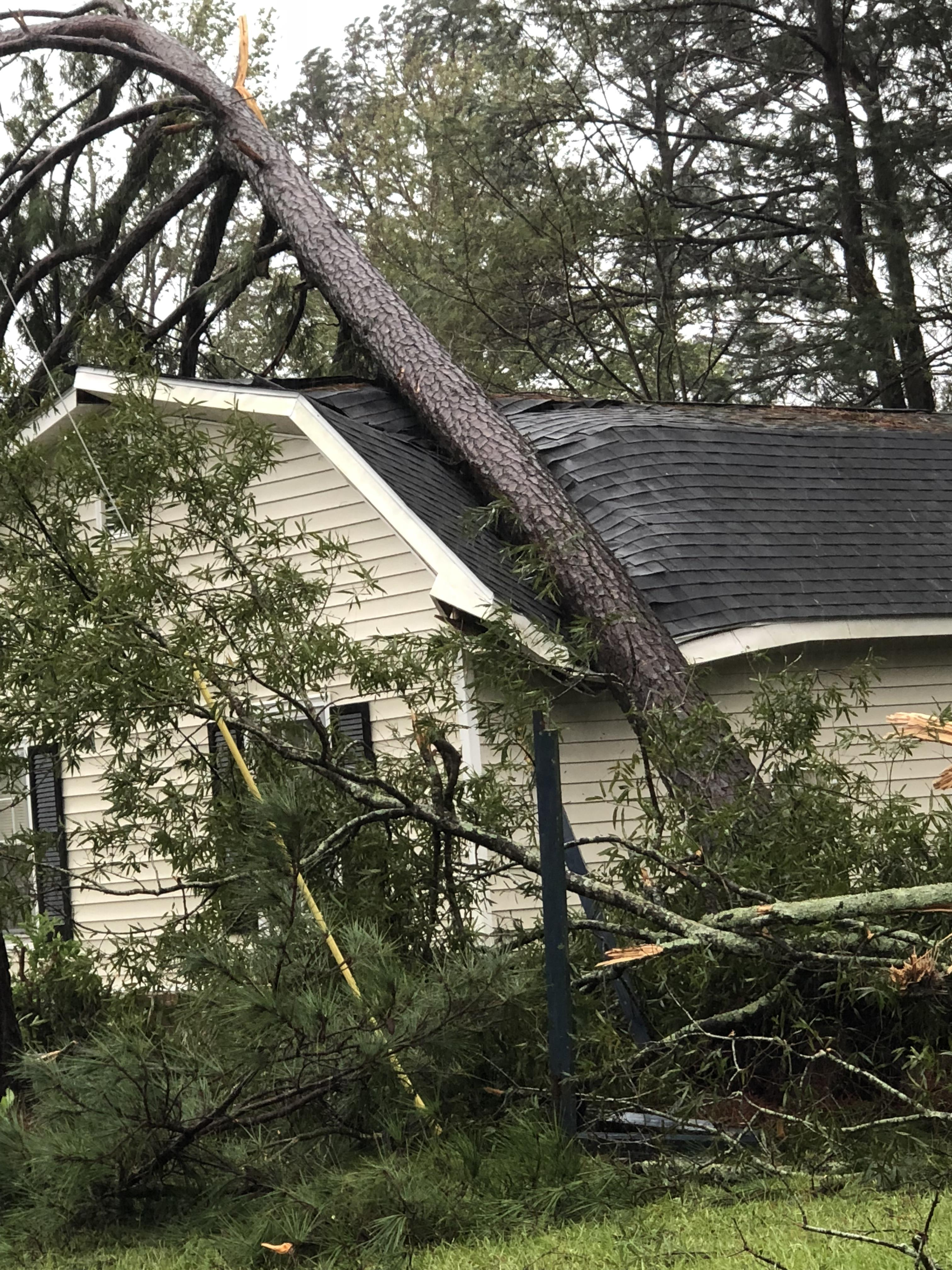 "<div class=""meta image-caption""><div class=""origin-logo origin-image wtvd""><span>WTVD</span></div><span class=""caption-text"">A tree fell on a house in Jacksonville, N.C. (ABC11 Eyewitness - Gary Bowens)</span></div>"