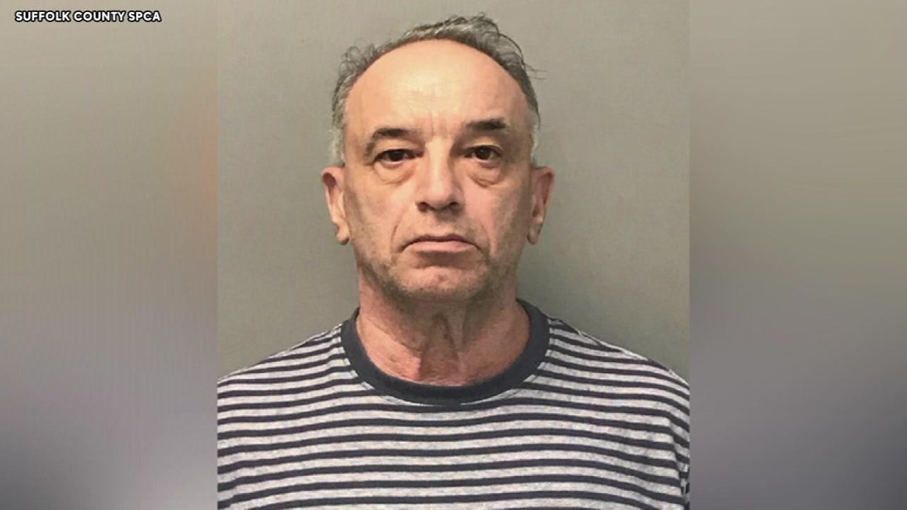 Sex offender list new york free