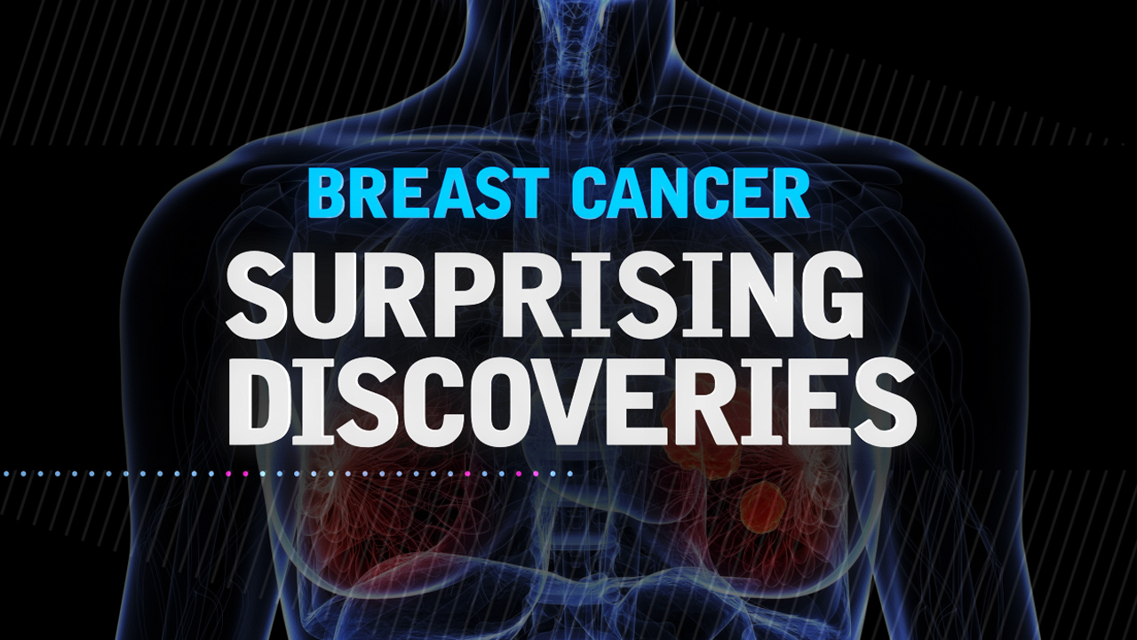 Discovery founding of breast cancer