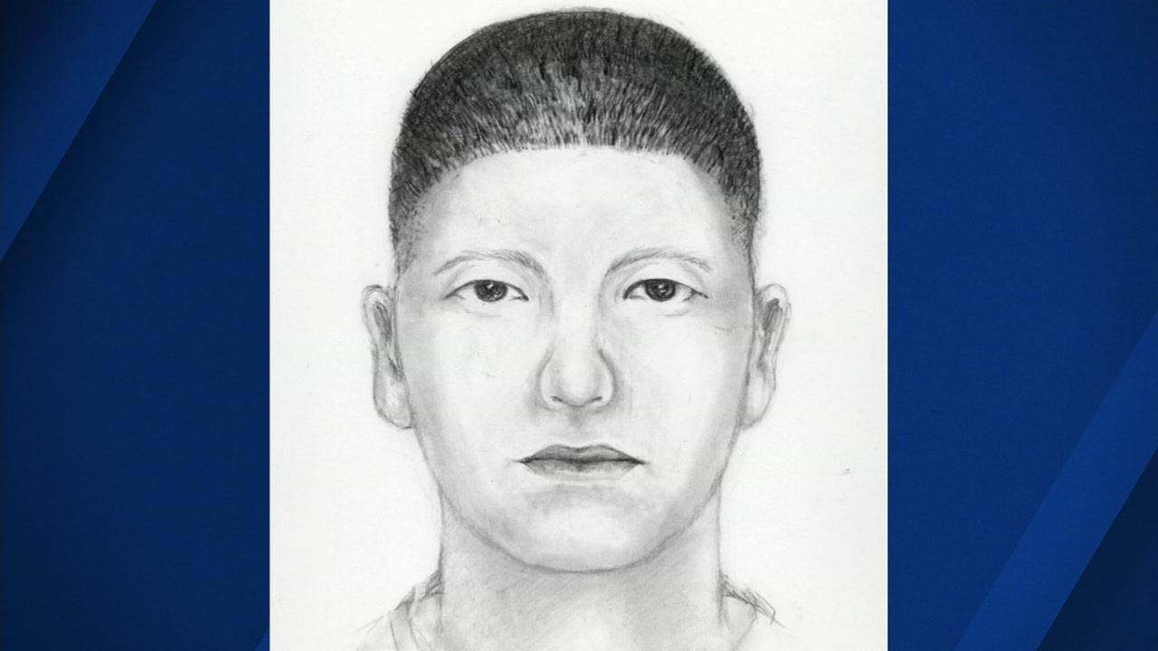 Police released a sketch of the suspect who punched Christopher Matthews on Sept. 8, 2018, in San Francisco.